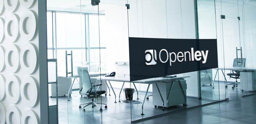 María Domíngez, CEO de Openley, nos habla sobre su experiencia en el sector del eCommerce