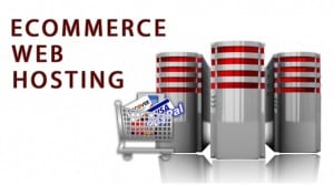 Hostings Ecommerce