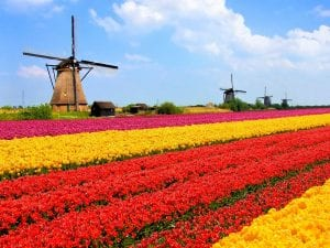 E-commerce en Holanda